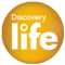 discovery_life